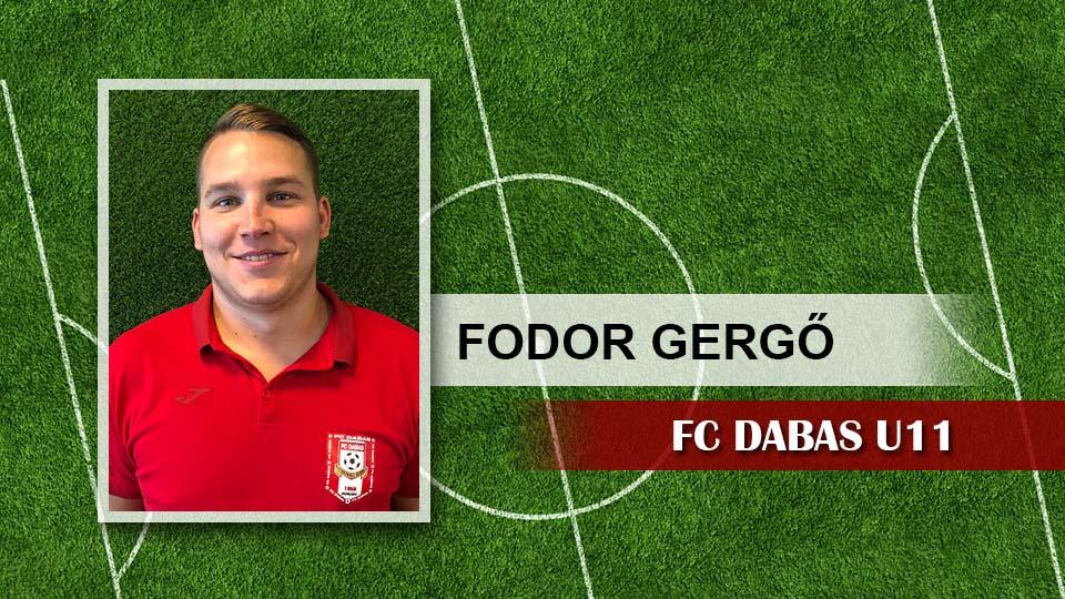 stab-2019-fodor-gergo
